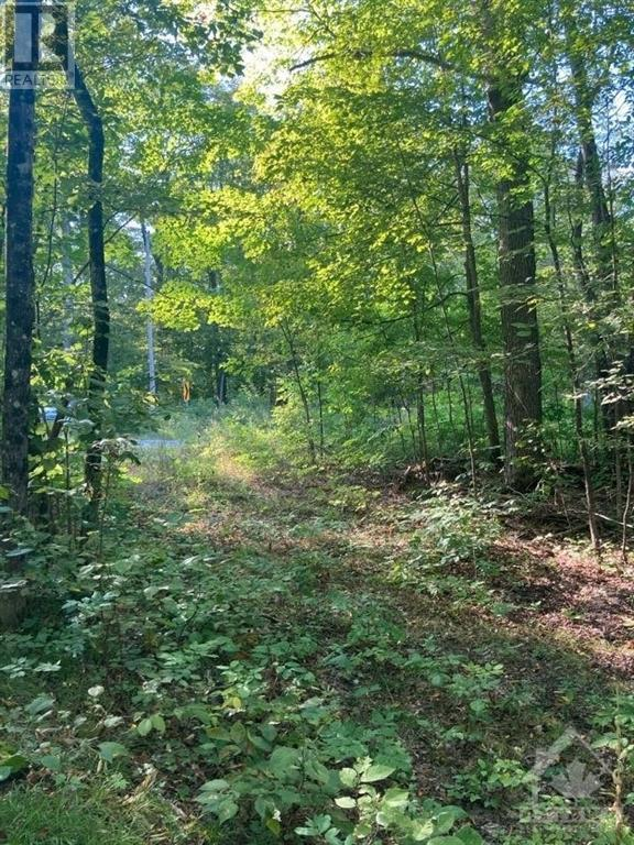 Part Lot 23 Bellamy Road, Mississippi Mills, Ontario  K0A 2X0 - Photo 1 - 1259604